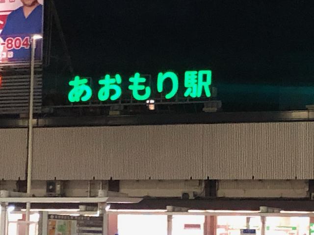 「なあんだ。」とは言つたものの、眼前に展開してゐる 秋(春)の津軽平野の風景には、うつとりしてしまつた。_d0057843_02142616.jpeg