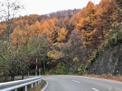 「なあんだ。」とは言つたものの、眼前に展開してゐる 秋(春)の津軽平野の風景には、うつとりしてしまつた。_d0057843_14153313.jpeg