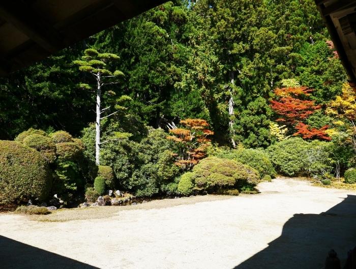 紅葉の高野山へ 2 金剛峰寺へ 2020-11-12 00:000_b0093754_23112916.jpg