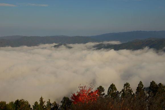 雲海と紅葉_e0370459_21354112.jpg