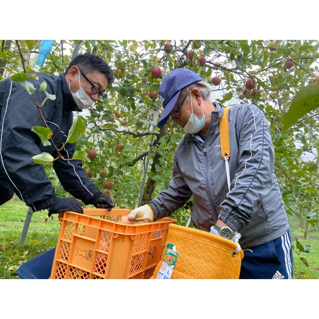 ☆りんご狩りと卵かけごはん☆_a0378416_23204715.jpg