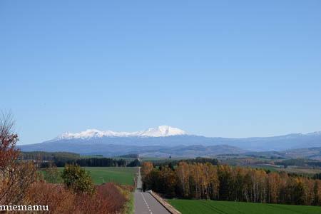 秋晴れの就実の丘と紅葉~10月の就実_d0340565_20123091.jpg