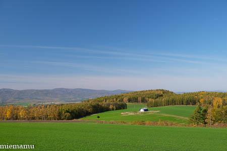 秋晴れの就実の丘と紅葉~10月の就実_d0340565_20123637.jpg