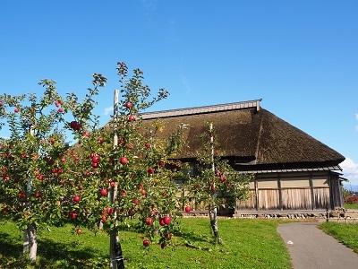 弘前市りんご公園_2020.11.03_d0131668_10470874.jpg