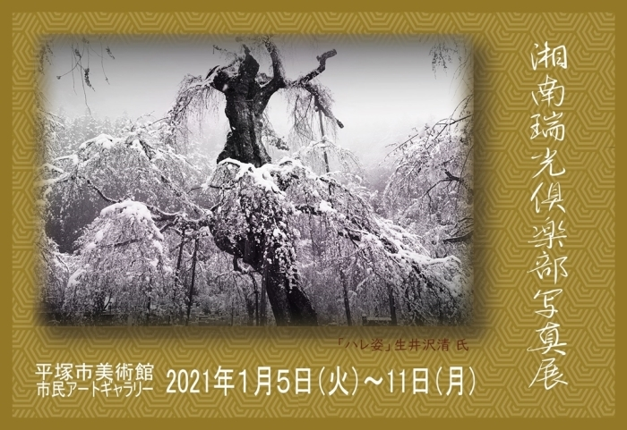 湘南瑞光倶楽部写真展_f0224100_09184913.jpg