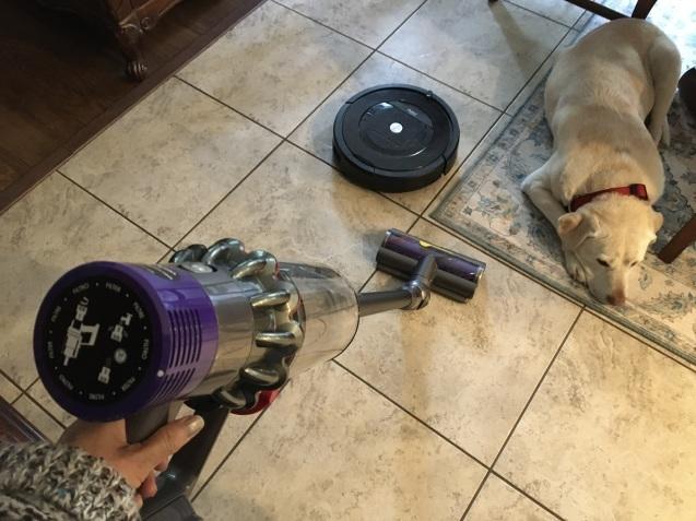 掃除が楽しいダイソン_b0366211_06122465.jpeg