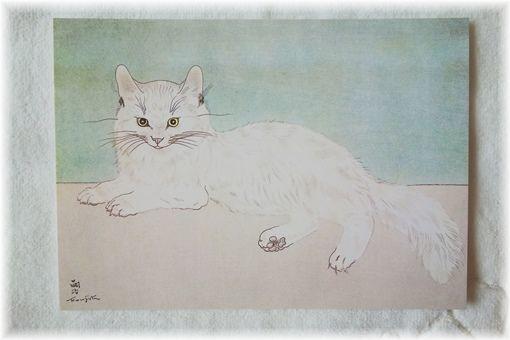 猫のポストカード_d0387712_22282624.jpg