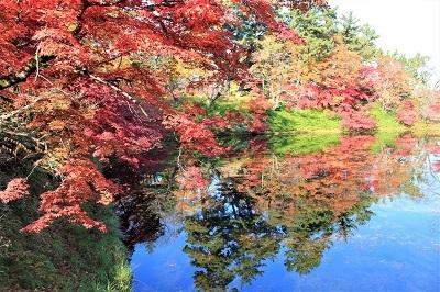 弘前公園を秋さんぽ_2020.11.12撮影_d0131668_13572804.jpg
