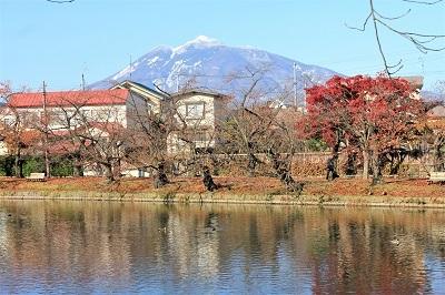弘前公園を秋さんぽ_2020.11.12撮影_d0131668_13591578.jpg
