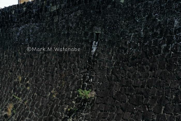 熊本城-二様の石垣(武者返し)_e0135098_00292272.jpg