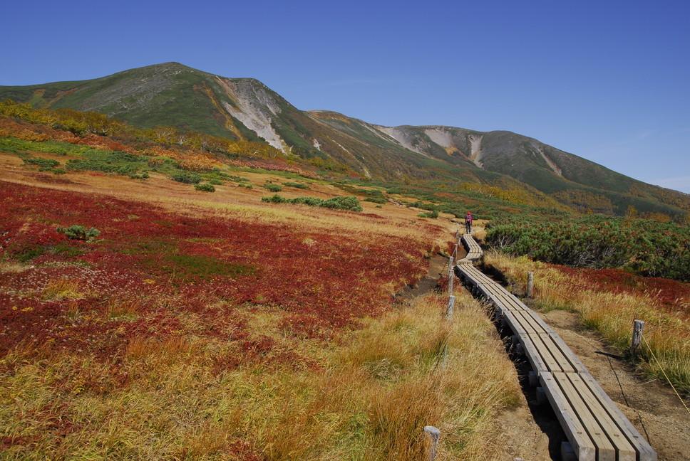 """2020年9月 『日本一早い紅葉、大雪山緑岳、沼巡り』 September 2020 \""""The Earliest Autumn in Japan -Mount Taisetsu-\""""_c0219616_11461026.jpg"""
