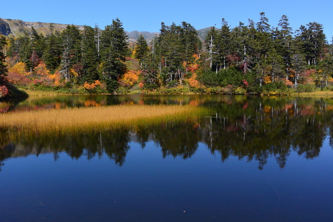 """2020年9月 『日本一早い紅葉、大雪山緑岳、沼巡り』 September 2020 \""""The Earliest Autumn in Japan -Mount Taisetsu-\""""_c0219616_12022294.jpg"""