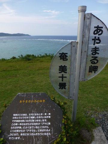 奄美大島 ビーチ巡り_e0237625_16355171.jpg