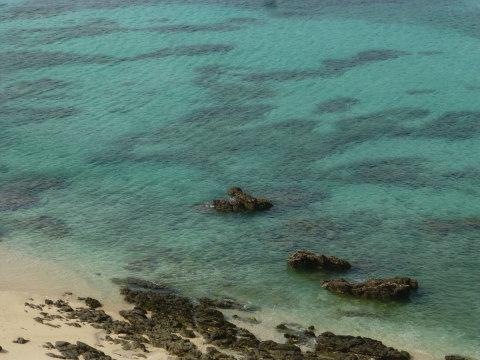 奄美大島 ビーチ巡り_e0237625_16510341.jpg