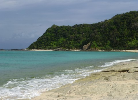 奄美大島 ビーチ巡り_e0237625_16561175.jpg