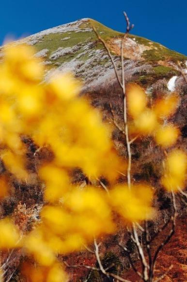 小春日日和。。。 ! !_a0248459_15420889.jpg