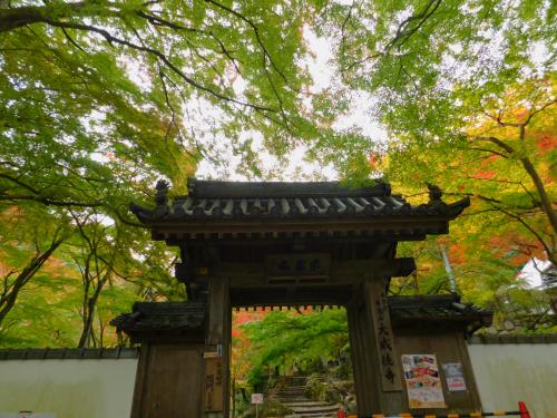 岸和田の大威徳寺。11月11日_e0136066_20541623.jpg