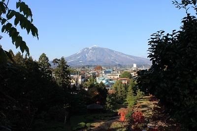 藤田記念庭園を秋さんぽ_2020.11.12撮影_d0131668_15195016.jpg