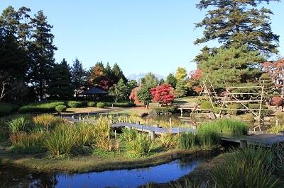 藤田記念庭園を秋さんぽ_2020.11.12撮影_d0131668_15255453.jpg