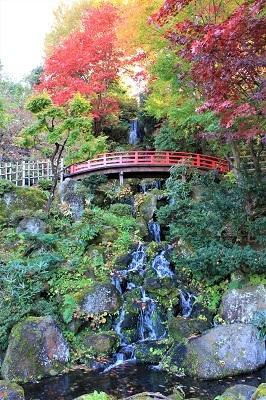藤田記念庭園を秋さんぽ_2020.11.12撮影_d0131668_15274520.jpg