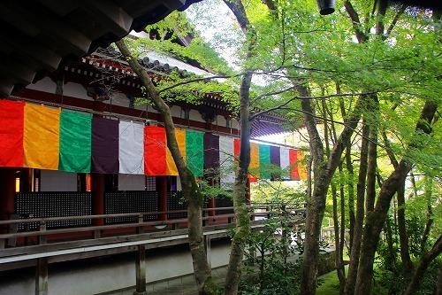京都旅-3日目_d0110193_19155313.jpg