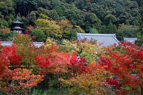 京都旅-3日目_d0110193_19170684.jpg