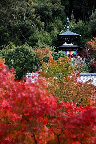 京都旅-3日目_d0110193_19173065.jpg