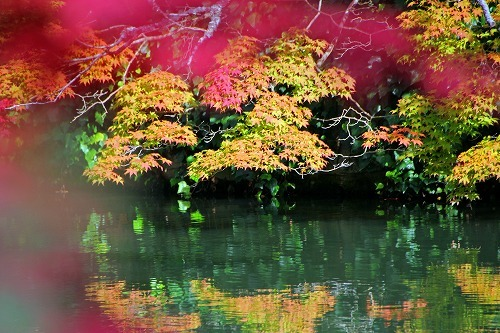 京都旅-3日目_d0110193_19175333.jpg