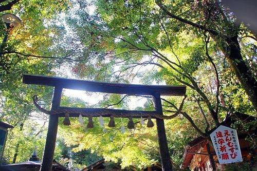京都旅-3日目_d0110193_19192192.jpg