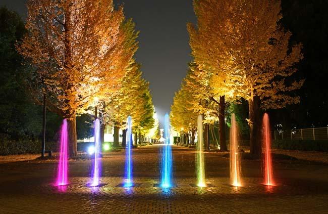 七色の噴水と銀杏並木_f0173596_19513871.jpg