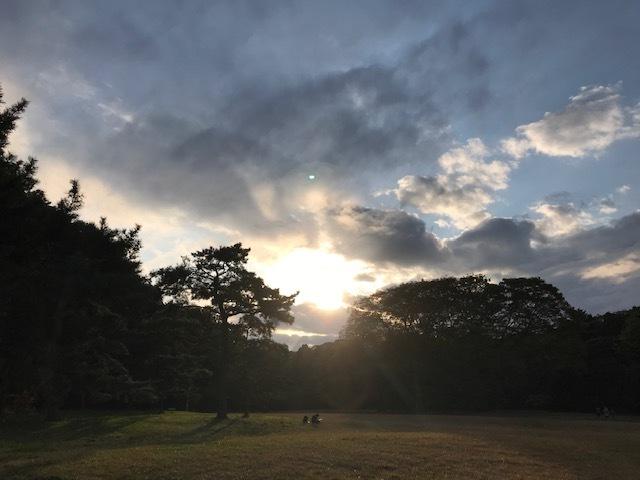 明治神宮の森で*歌うたひ_d0085018_16214874.jpg