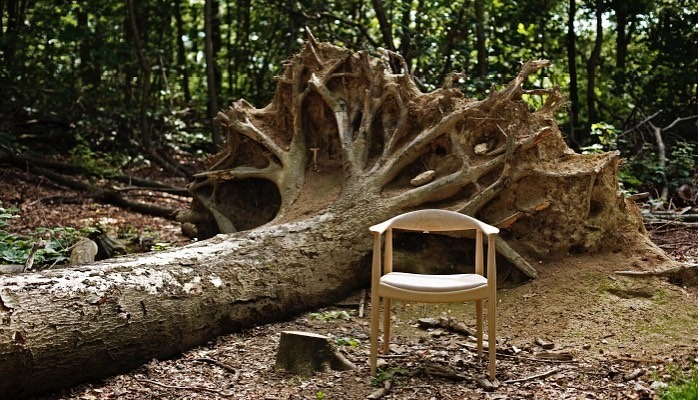 the chair 限定展示中 @LIFESTYLE SHOP COKU_b0115615_15045371.jpg