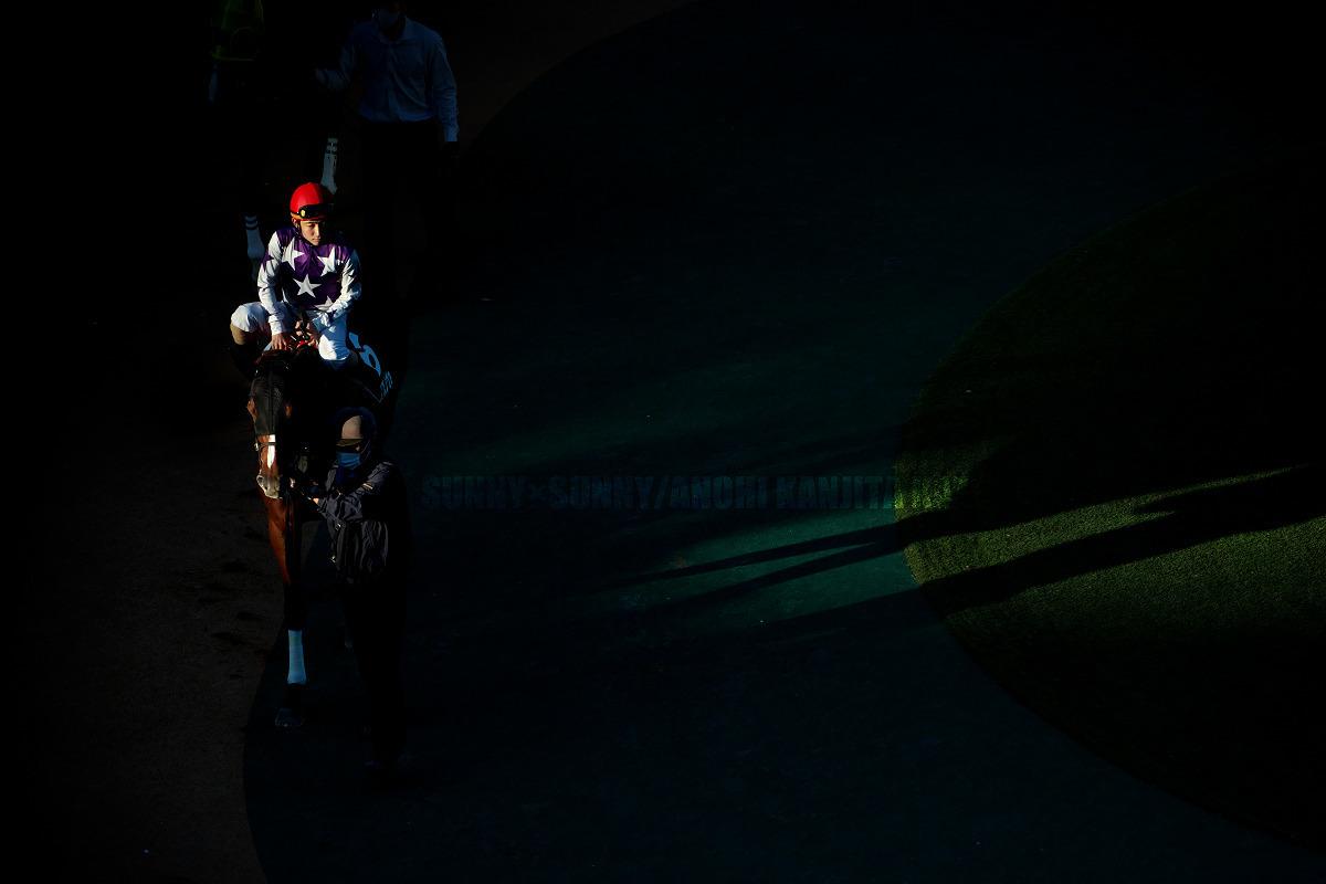 9か月ぶりの府中 第25回東京中日スポーツ杯武蔵野ステークス(GIII)_a0204724_13140167.jpg