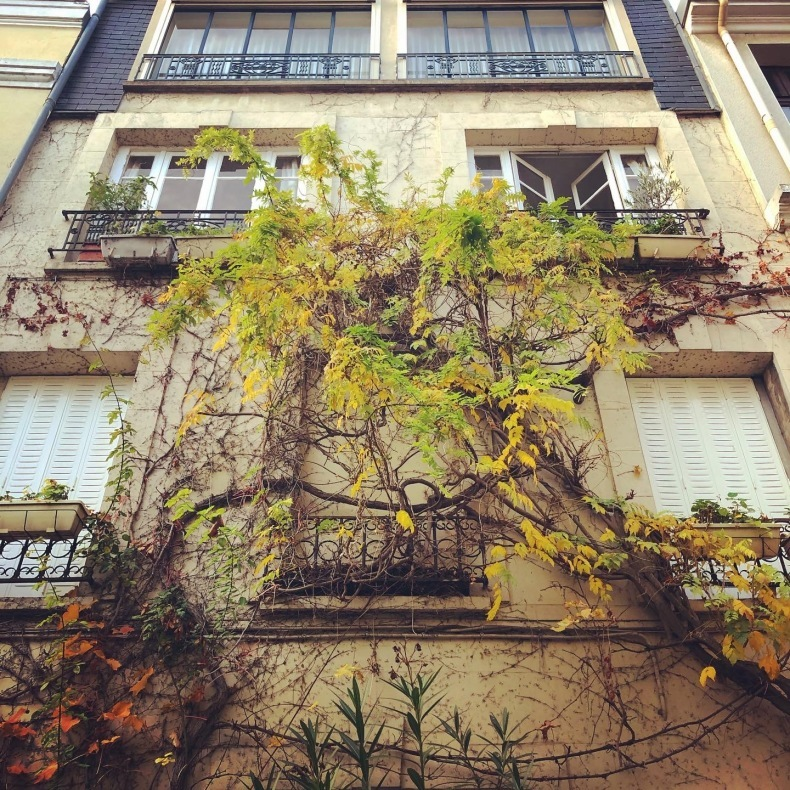 ロックダウンのパリ歩き、そしてパリ最優秀バゲットのマームッド・メセディさんのお店_a0231632_18223147.jpeg