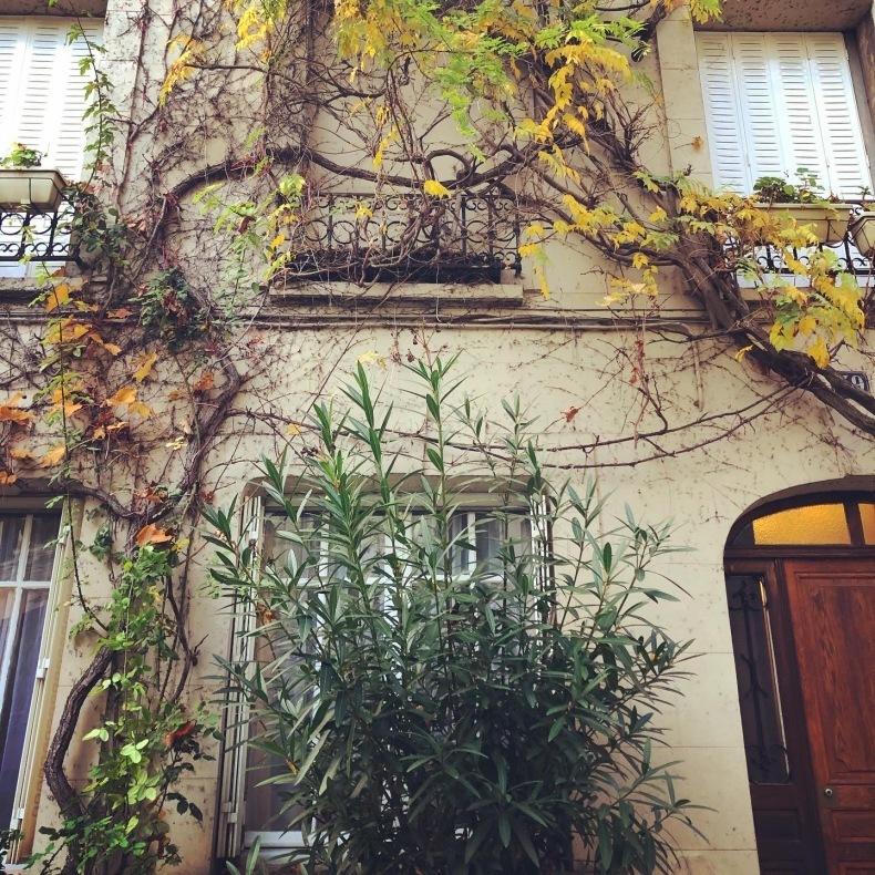 ロックダウンのパリ歩き、そしてパリ最優秀バゲットのマームッド・メセディさんのお店_a0231632_18225622.jpeg