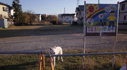 Vol.1527 太尾下町子どもの遊び場_a0117039_20004559.jpg