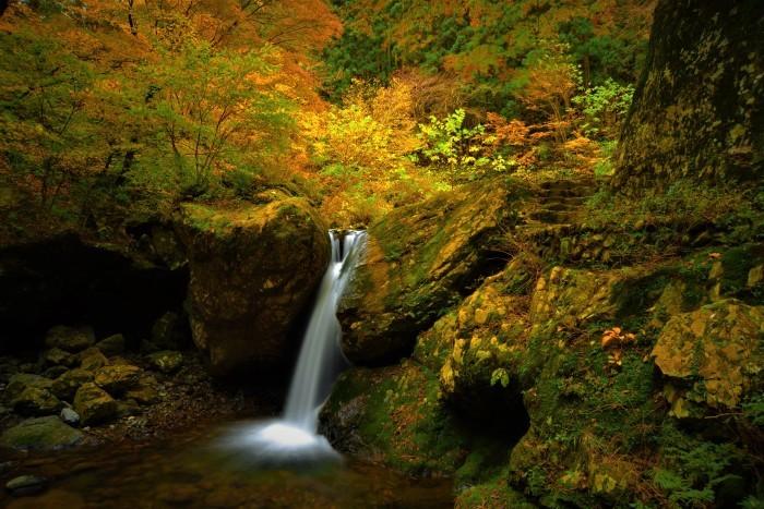 秋色の水音_f0045844_09271205.jpg