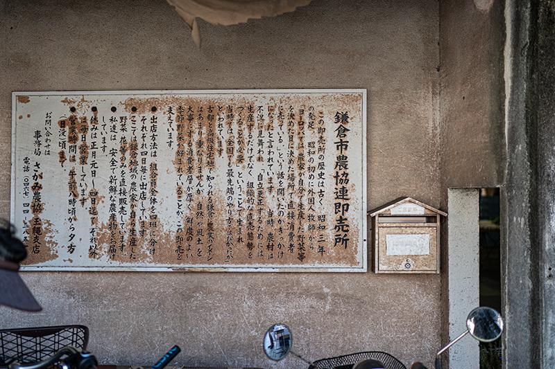 2020/11/15 イザ鎌倉!_b0171364_10002410.jpg