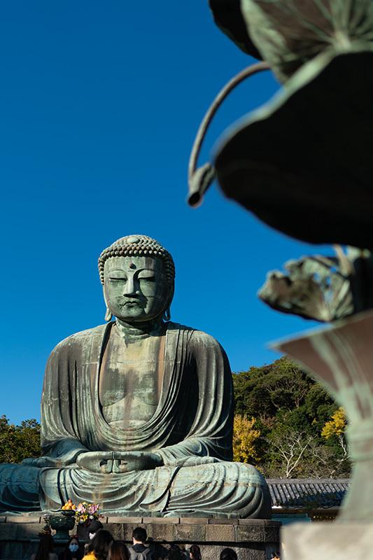 2020/11/15 イザ鎌倉!_b0171364_10222431.jpg