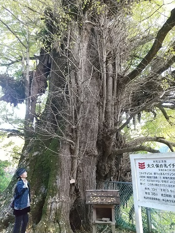 神山町の紅葉_d0043390_20544415.jpg