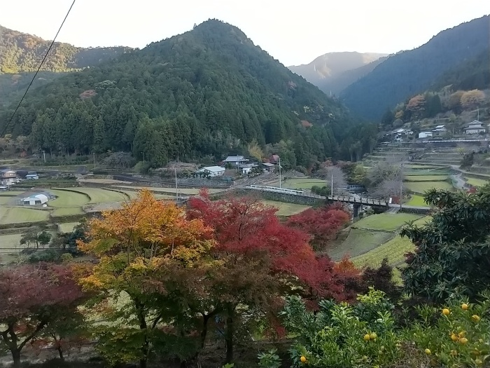 神山町の紅葉_d0043390_20572829.jpg