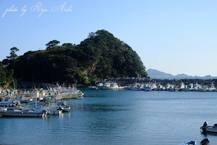 漁港の朝_f0332795_22542776.jpg