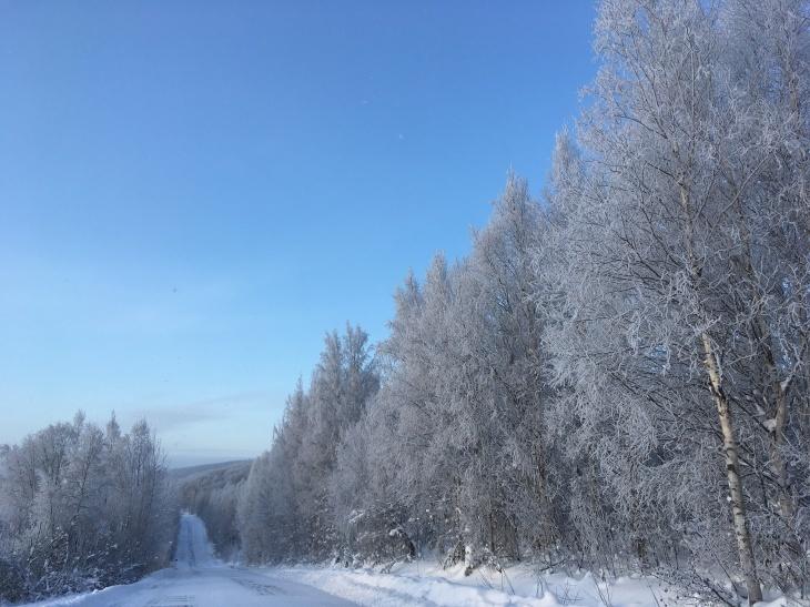 樹氷_b0135948_10121452.jpg