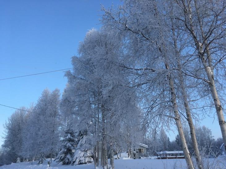 樹氷_b0135948_10123124.jpg