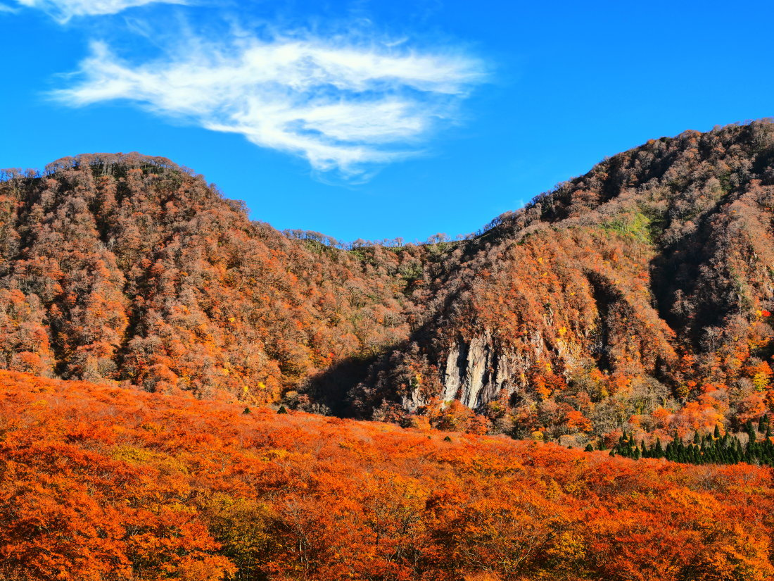 紅葉 10   鳥取県_d0286954_04495092.jpg