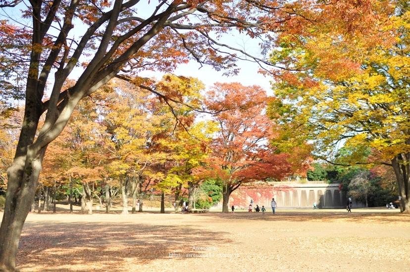 近くの公園まで。_e0359481_23540549.jpg