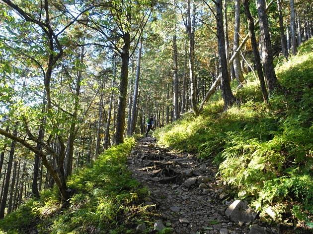 草紅葉の藤原岳天狗岩を歩く  SOTA#JA/SI-007_f0073587_16364037.jpg