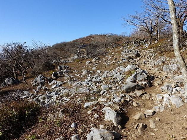 草紅葉の藤原岳天狗岩を歩く  SOTA#JA/SI-007_f0073587_16582529.jpg