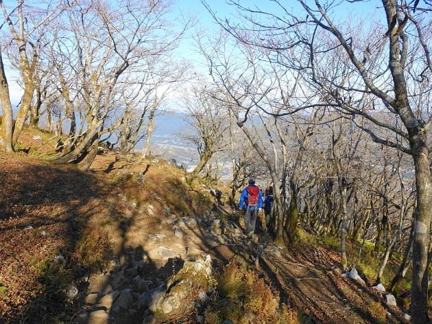 草紅葉の藤原岳天狗岩を歩く  SOTA#JA/SI-007_f0073587_18491465.jpg
