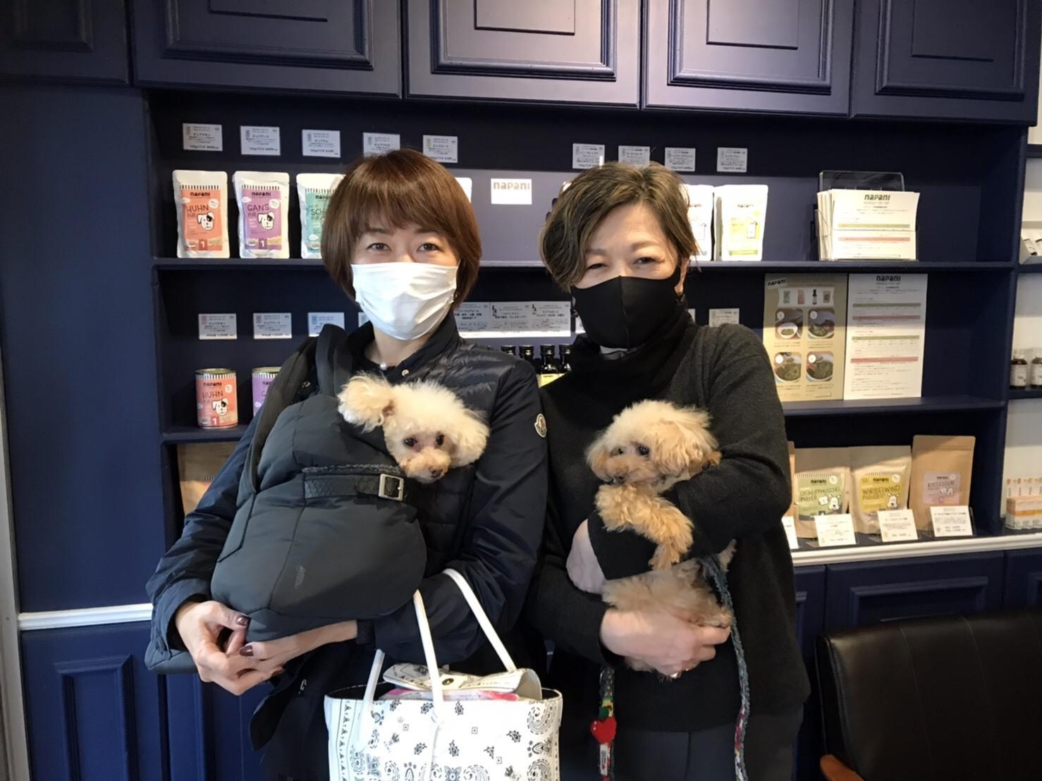 Dr.クレス Pet Clinic 開院♪_d0339889_17112031.jpg